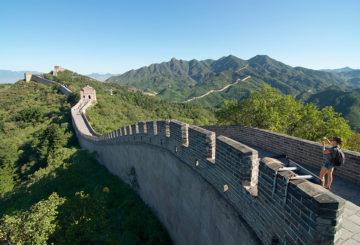 Chinees kuddegedrag en luiheid